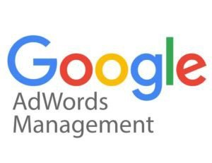 Google-Adwords-Logo Ecommerce Consulting - Magento Consulting - Organic SEO Consulting